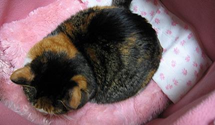 20091208kamakuraue.jpg