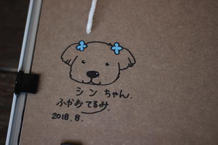 20180820d.jpg