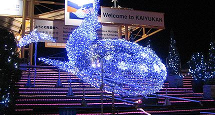 2007.11.03.kaiyuukan2.jpg