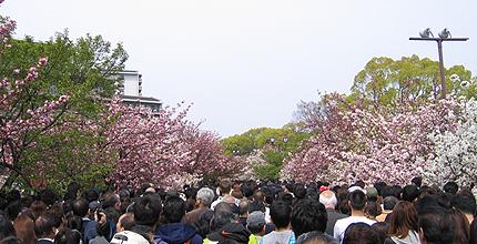 20100426zouhei.jpg